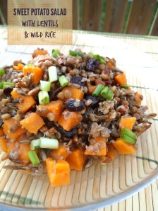 Sweet Potato Salad with Lentils and WIld Rice