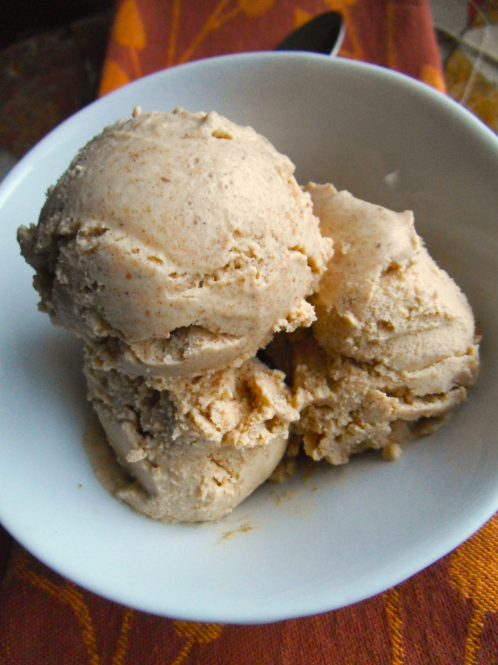 Pumpkin Spice Ice Cream {Paleo}