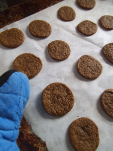 cookies-tray-mitt