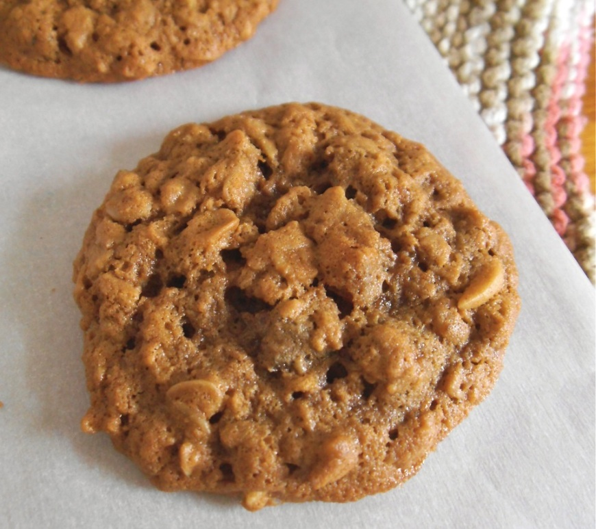 Apricot Oatmeal Cookies {Gluten Free}   Swirls and Spice
