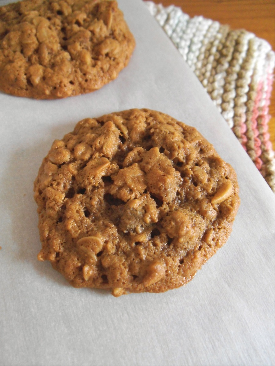 Apricot Almond Oatmeal Cookies {Gluten-Free}